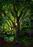 黃錫煌繪畫作品相片十三《盼望的晨光》