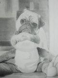 郭啟業素描作品《青蛙與小狗 /八哥與青蛙老友》