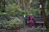 林靜安攝影作品《公園》