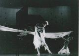 梁寶珠舞蹈演出相片三