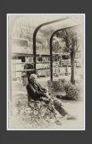 李鑒泉攝影作品《油麻地印象》