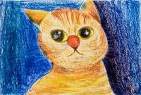 余俊皓油粉彩紙本作品《貓》