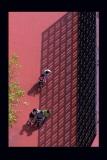 羅國華攝影作品《人生的階梯(PS)》