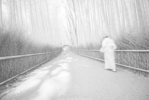 鄭啟文攝影作品《嵐山》