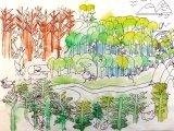吳瑋呈繪畫作品《北歐森林》