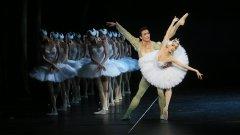 [通達節目]香港芭蕾舞團《天鵝湖》