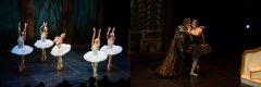 [通達節目] 香港芭蕾舞團 輕輕鬆鬆睇芭蕾:《天鵝湖》篇